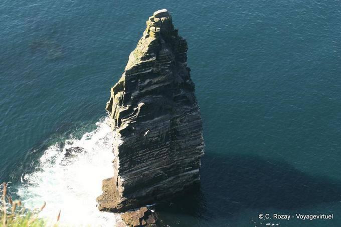 Branaunmoresea stack, rocher dans la mer, Cliffs of Moher, Irlande